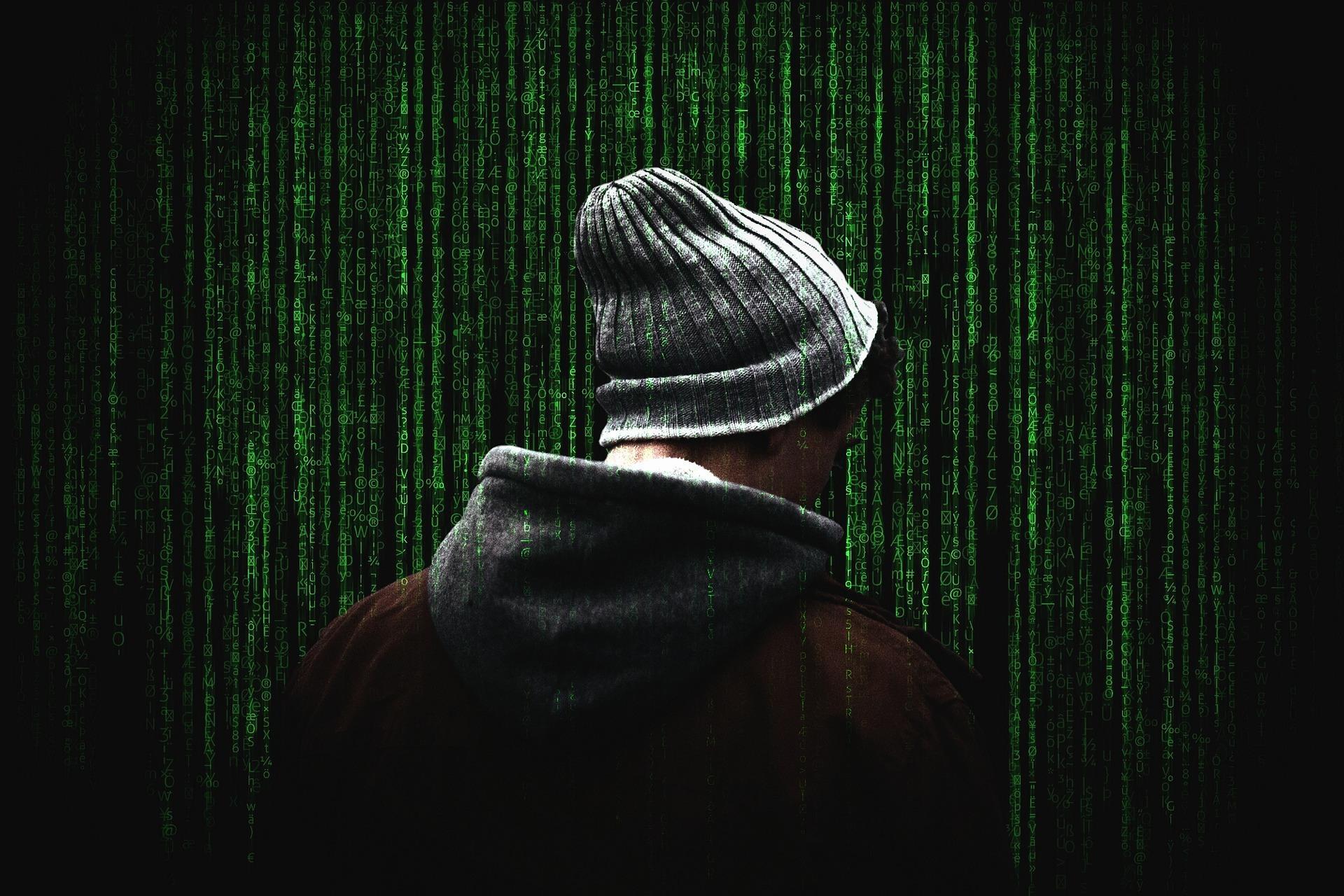 Das Computerprogramm auf dem Downloadportal